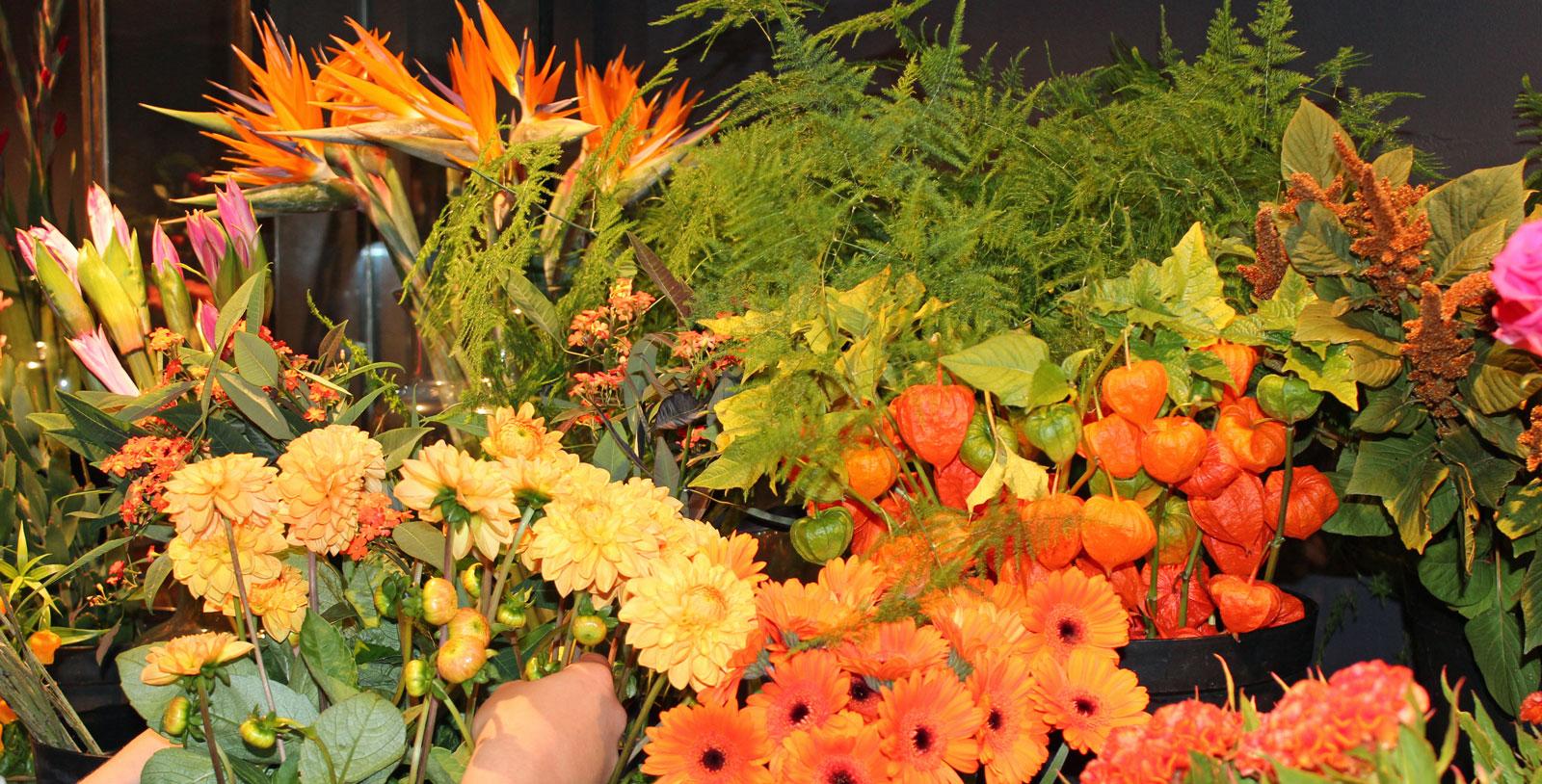 Bestel een mooie bos bloemen bij MJ Bloem